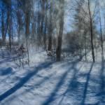 """""""Windy Winter"""" by karolsstuff"""