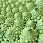 """Edible Pearls"" by KsWorldArt"