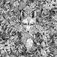 hidden fox pattern
