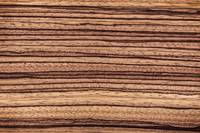 Zebrawood | A Natural Abstract