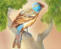 Bluebird in Tree by Leslie Harlow