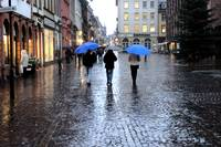 Wet Evening on Heidelberg Cobblestone