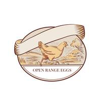 Hen Running Open Range Eggs Oval Drawing