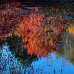 """Cheshum, New Hampshire Reflection II"" by bavosiphotoart"