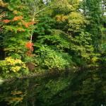 """""""October Reflections"""" by KsWorldArt"""