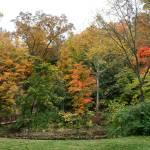 """Bridge in Autumn"" by KsWorldArt"