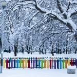 """Playful Winter Wonderland"" by raetucker"