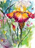 Bearded Iris and Bees Whimsical Watercolor