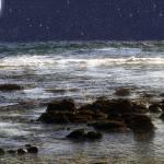 """Sparkling Sea"" by RCdeWinter"