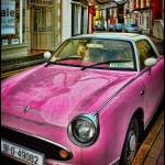 """White Poodle in Pink Car"" by curtisstaiger"