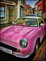 White Poodle in Pink Car