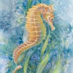 """Sweet Seahorse"" by LisaMclaughlin"