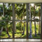 """Tropical_Reflections_Dreaming_Bay_Window_View"" by lightningman"