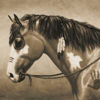 Native American Pinto War Horse in Sepia Art Prints & Posters by Crista Forest