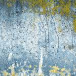 """SPRING LANDSCAPE TEXTURE #3"" by paulspeed"