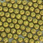 """""""Gold Colored Metal Beads"""" by rhamm"""