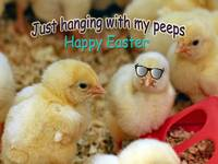Just Hanging with my Peeps