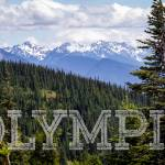 """View of the Olympic Range from Hurrican Ridge in O"" by rYgardner"