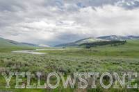 Yellowstone National Park Lamar Valley
