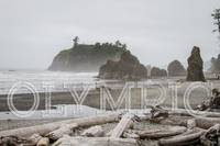View of Ruby beach In Olympic National Park