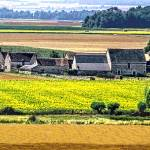 """""""French Countryside"""" by mjphoto-graphics"""