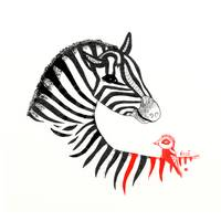 Black Zebra and an Orange Bird