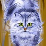 """Silver Persian Cat"" by MelanieD"