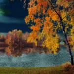 """""""Moon Tapestry"""" by zenin"""