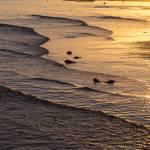 """""""Golden Tide"""" by lightningman"""