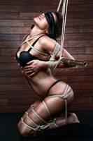 Blindfold&tied to bamboo pole, Fine Art of Bondage
