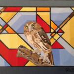 """PIGMY OWL. I"" by ROFFEART"