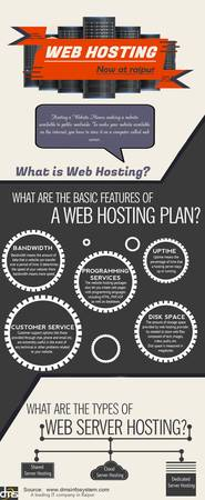 Web Hosting Company in Chhattisgarh