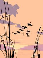 Abstract Ducks Lake Sunset retro pop art landscape