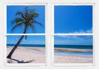 Tropical_Paradise_Whitewash_Window_View