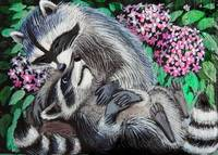 Raccoons in love
