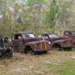 """Row of Rusty Resting Ford Pickups"" by minnron37"
