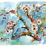 """Blossoming Almond Tree Watercolor by Ginette"" by GinetteCallaway"