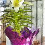 """""""Easter Lily and Doll"""" by artbyclaire"""