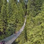 """Capilano Suspension Bridge"" by PaulCoco"