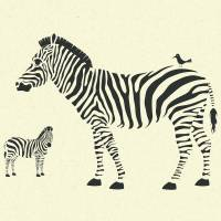 ZEBRAS Art Prints & Posters by Jazzberry Blue