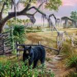 Florida Black bear- Blackberries and Honey