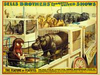 Sells Brothers United Shows Circus Poster BB-02-04