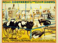 Sells Brothers United Shows Circus Poster BB-02-05