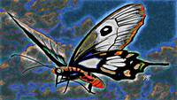 Abstract Butterfly Art 4