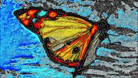 Abstract Butterfly Art 11