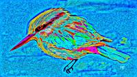 Abstract Bird Art 8