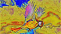 Abstract Bird Art 11