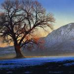 """lone cottonwood tree ute mountain"" by rchristophervest"