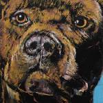 """Brindle Pit Bull"" by creese"