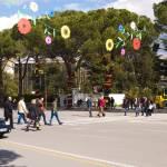 """""""Spring on Dëshmorët e Kombit Boulevard"""" by raetucker"""
